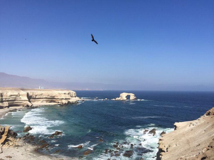 Antofagasta.jpeg